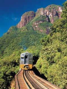 Serra do Mar, Brazil.