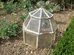 garden cloche from op shop glass bottle/jar things with broken lids!