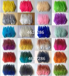 Beautiful rooster tail feathers / 31 kinds of colors Eagle Feathers, Pheasant Feathers, Peacock Feathers, Rooster Feathers, Rooster Tail, Peacock Tail, How To Make Paper Flowers, Feather Crafts, Colorful Feathers