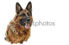 köpek resmi çizim ile ilgili görsel sonucu