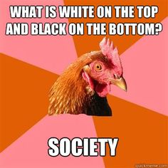 what is white on the top and black on the bottom society - Anti-Joke Chicken