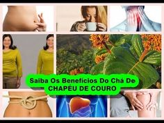 """Saiba Os Benefícios Do Chá De  CHAPÉU DE COUROKnow The Tea Benefits Of LEATHER HAT  If You Liked This Video, SIGN UP FOR THE CHANNEL - """"Natural Remedies Treatments"""" and Receive New Videos Every Day! Liked the Tip ?. Subscribe to the channel. Thanks!. Playlists Https://www.youtube.com/playlist?list=PLhXPPtz5ykawAV1-bmieHvv-UqhT6ipeh REGISTER HERE https://www.youtube.com/channel/UCVcLj9spkNZ9fiLaSJ95xyA?sub_confirmation=1…"""