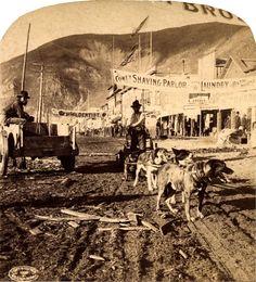Klondike dog team, Dawson City, Yukon, during the gold rush. B.W. Kilburn, stereograph 1899