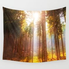 Sunshine forest Wall Tapestry Sales: 33 The morning sun is peeking through the pine trees on a hazy morning.   Nature, landscape, forest, pine, trees, sun, sunlight,sunbeams, sunrays,yellow, bestseller