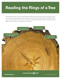 Free Ecology Lesson Plans and Posters from PBS.