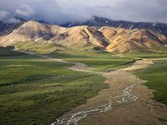 Braided River in Polychrome Pass, Denali National Park, Alaska, USA, Patrick Endres