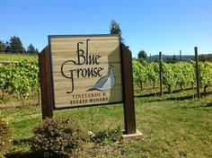 Discovering the best of Cowichan Valley wineries