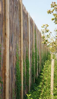 Nice willow fence at Quartier Dix30 #TheGreenBarrier #fence #privacy