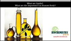 Lipids are involved mainly with long-term energy storage. They are generally insoluble in polar substances such as water. Functions of lipids included here.Visit: http://www.biochemden.in/biomolecules-lipids/