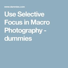 Use Selective Focus in Macro Photography - dummies