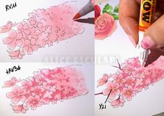Copic Italy: Flowers - part two - good tutorial on colouring flowers