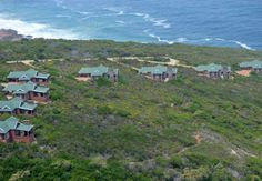 Blue Whale Resort in George, Garden Route