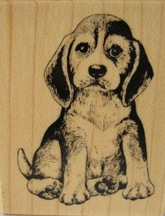 Beagle Puppy PSX D796 Wood Mounted Rubber Stamp Dog