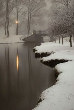 #Beautifulthings #Winter #Snow #Fog