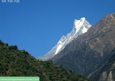 Machhapuchare Mountain also known as Fish Tail or Virgin Peak