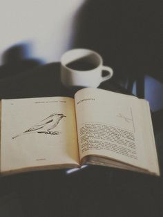 """""""Some books you read. Some books you enjoy. But some books just swallow you up, heart and soul."""" Joanne Harris"""