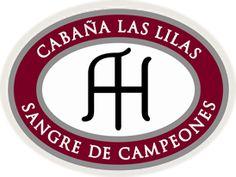 Stay and Cabaña Las Lilas