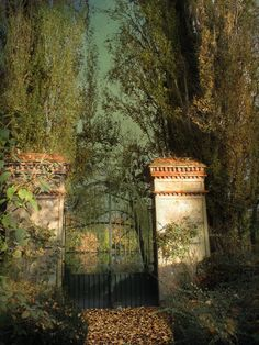 ❥ mysterious gate