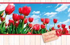 Kaart met perk rode tulpen ter Felicitatie. Plants, Card Stock, Planters, Plant, Planting