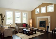 Transitional Dark Wooden Floor Living Room Design Ideas, Pictures, Remodel and Decor