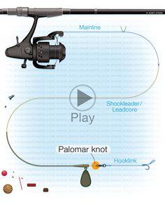 Carp fishing knots : Palomar knot