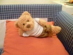 A bit of gymnastics? My Teddy Bear, Cute Teddy Bears, National Teddy Bear Day, Giant Teddy, Teddy Bear Pictures, Love Bear, Little Pigs, Pet Clothes, Plushies