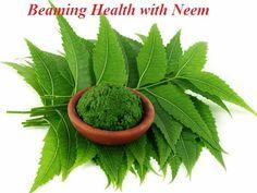 Ayurveda Health Benefits of Neem