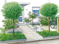 small front gardens seem to use too many different plants . Especially small front gardens seem to use too many different plants .Especially small front gardens seem to use too many different plants . Herb Garden Design, Garden Design Plans, Vegetable Garden Design, Small Garden Design, Garden Ideas, Ideas Para El Patio Frontal, Small Front Gardens, Front Yard Design, Different Plants