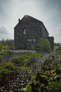 Gallery of The Dox House / Mjölk architekti - 5