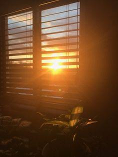aesthetic night sunset discover summer orange