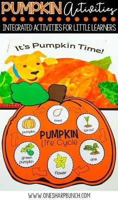 This book comes in Spanish - Tiempo de calabazas! FREE life cycle of a pumpkin activities, including pocket chart sentences and sequencing printable. Perfect for your pumpkin investigations! Plus, we love the adorable pumpkin crafts! Science Halloween, Preschool Halloween Activities, Pumpkin Life Cycle, Apple Life Cycle, Kindergarten Science, Kindergarten Fall Art Lessons, Kindergarten Worksheets, Autumn Activities, Life Cycles