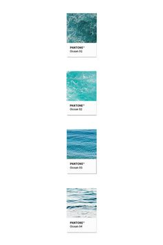 Color Story I did while working on the branding for Love Surf Yoga.  By Thea Kennedy / Design Quixotic.