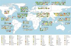 Researchers with the International Center for Tropical Agriculture mapped the origins of crops around the world, creating interactive charts to show how far they've journeyed. Central America, South America, Food Map, Interactive Map, East Africa, Southeast Asia, Diversity, Social Studies, Social Media