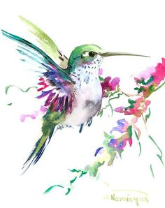 Hummingbird art original watercolor painting 8 X by ORIGINALONLY