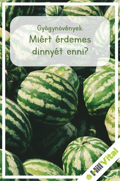 Watermelon, Fruit, Food, Essen, Meals, Yemek, Eten