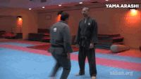 Discover & Share this Martial Arts GIF with everyone you know. GIPHY is how you search, share, discover, and create GIFs.