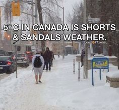 in Canada is shorts & sandals weather Canadian Memes, Canadian Things, I Am Canadian, Canadian Humour, Canada Funny, Canada Eh, Snow Quotes, Meanwhile In Canada, Funny People Pictures