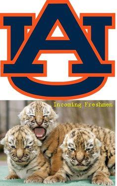 Auburn University Tigers - incoming freshmen