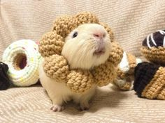 These are a two of my favourite things! :) Piggies and crocheting!