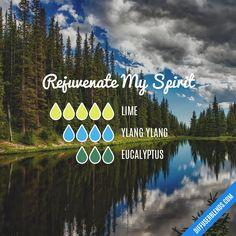 Rejuvenate My Spirit Essential Oils Diffuser Blend