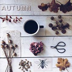 Beautiful autumn with beautiful treasures. Enjoy your weekend everyone! Enjoy Your Weekend, Gallery Wall, Autumn, Beautiful, Instagram, Decor, Dekoration, Fall, Decoration