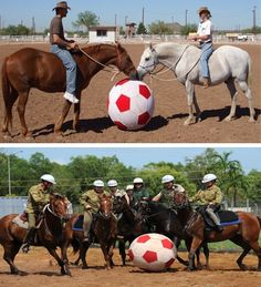 Horses playing soccer # Horses #Soccer # Sports