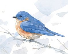 Bluebird watercolor painting  bird print 5x7