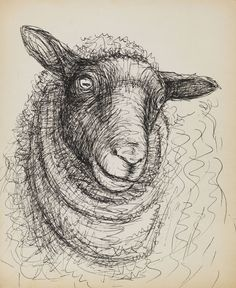 Design is fine. History is mine. Henry Moore, Untitled, head of a sheep, 1972. Pen and ink drawing. Via Ketterer