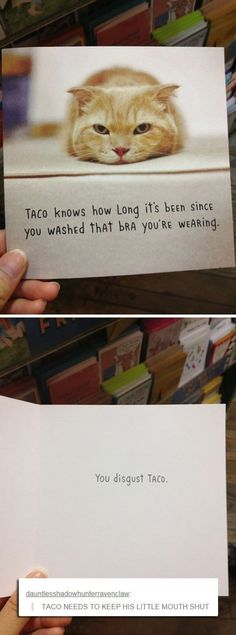 Taco needs to rollback that attitude.