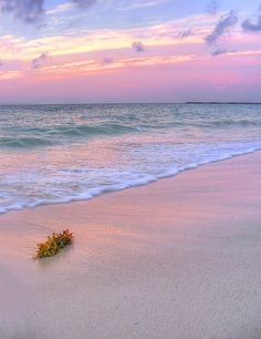 Playa Del Carmen, Mexico... Where Jamie and I got married :)