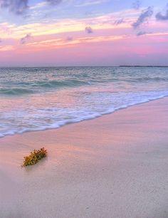 Playa Del Carmen, Mexico... Our next vacation