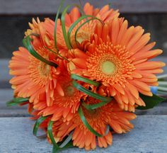 Love the color. Bridal bouquet of orange gerber daisies by The Bloomery Florist Boutique in Pittsburgh, PA. come see more wedding flowers ~ http://www.pittsburghwedding.com/vendor-directory/category/wedding-flowers-and-florists/