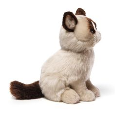 Amazon.com: Gund Grumpy Cat Plush Stuffed Animal Toy: Toy: Toys & Games