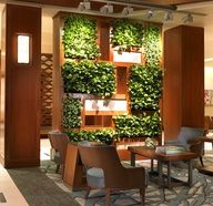 Hotel lobby Vertical Garden from Ambius